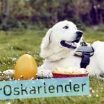 banner_oskarlender